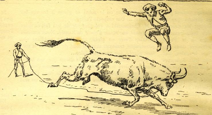 1887_saut_1