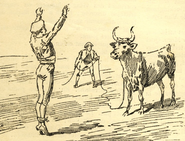 1887_saut_2.jpg