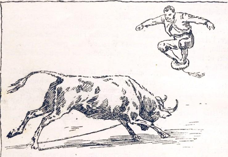 1887_saut_3