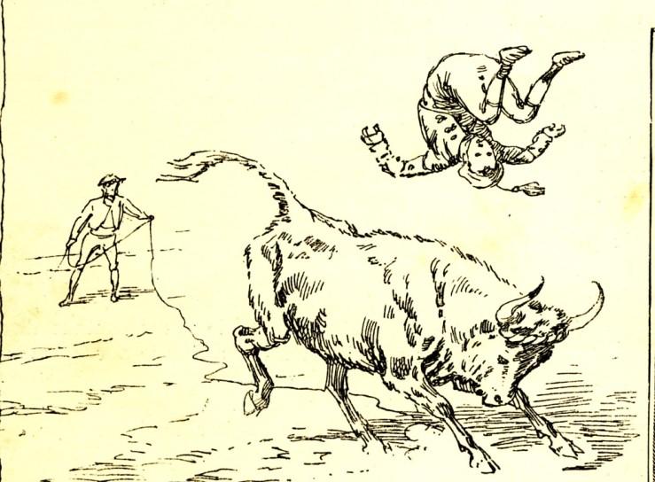 1887_saut_4.jpg