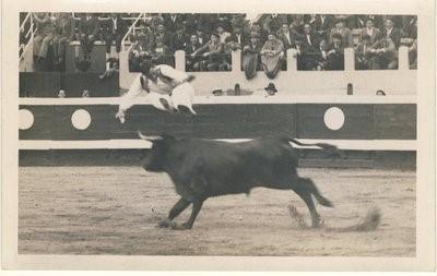 saut_dax_1935.jpg