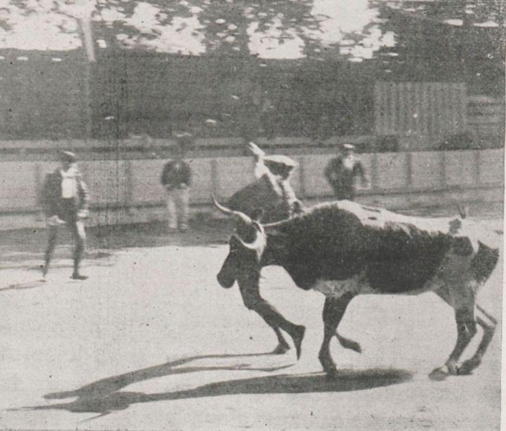 st-vincent-de-tyr_1898_sport-univ_2